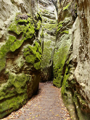 Autumn sandstone rock city in Czech Paradise National Park