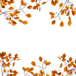 canvas print picture - Autumn background frame. Yellow leaves on the branches isolated