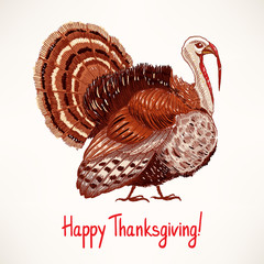 cute hand drawn turkey - 2