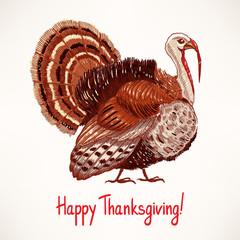 cute hand drawn turkey - 2