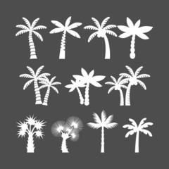 palm tree icon set, vector eps10