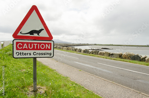 Road sign on a countryside road warning for otters crossing - 71929303