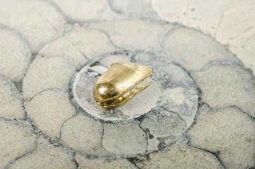 Altmetall auf Ammonit (Goldkrone)