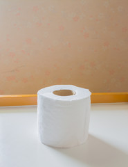 image of single rolls of toilet paper