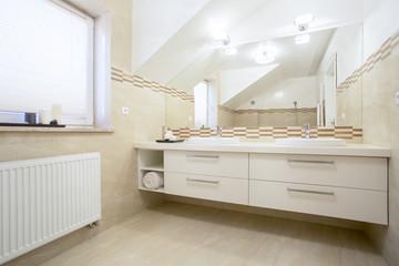 Porcelain sinks in a bright bathroom, horizontal