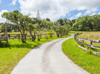 The winding country road through farmland with clear blue sky.
