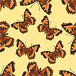 Seamless texture flight Butterfly Vanessa cardui vector
