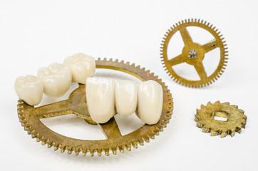 Zahn der Zeit