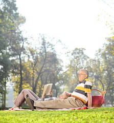 Mature couple having a picnic in park