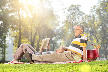 Mature couple relaxing on a picnic in park
