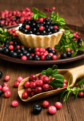 sweet tartlet with cranberries and blueberries