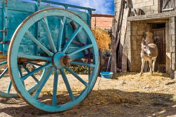 Sardegna, Tonara, piccolo paese del Nuorese
