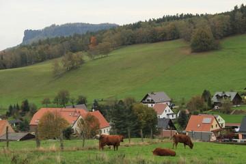 Blick über Pfaffendorf zum Lilienstein