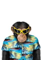 Smartmonkey-tourist-sonnenbrille
