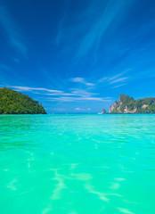 Serenity Shore Ocean Panorama