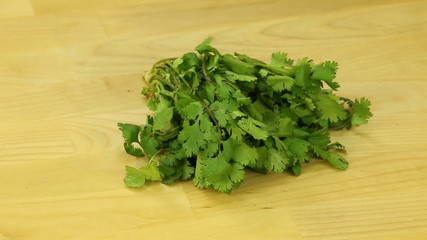 Bunch cilantro on a wooden board