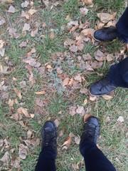 Ноги на листве
