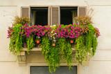 green flowery balcony