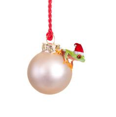 Weihnachtsfrosch
