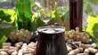 Drop of Wine Create Splashes