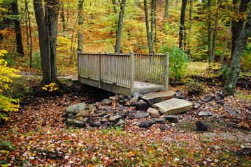 Wooden Bridge in the Forest During Fall