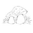 Zwei Pilze im Gras - 71950985