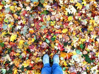 Mit Füssen im Laub stehen, Herbst, bunte Blätter