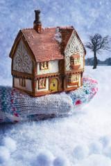 Winter Cottage In Gloved Hand