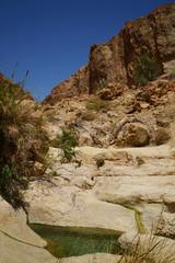 Ein Gedi, Dead Sea, trekking in Wadi David