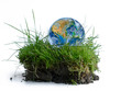 earth globe in a piece of green grass, isolated on white