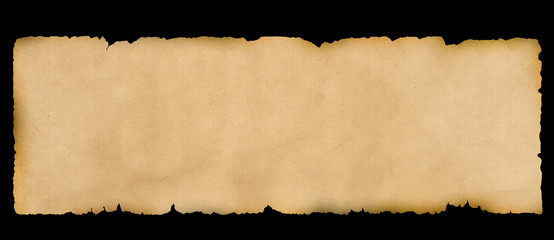 Parchment. Old grunge paper.