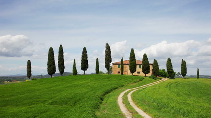 Rural house and cypress avenue, typical landscape of Tuscany