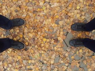 Ноги на листьях