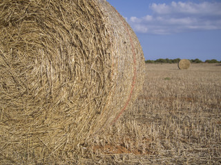 Two straw bales in the countryside