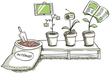The media grow in internet