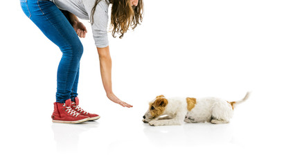 Woman training dog isolated