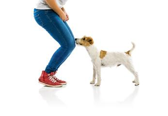 Woman training dog isolated