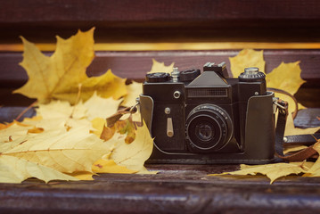 Vintage camera on wooden bench in autumn park. Instagram style t