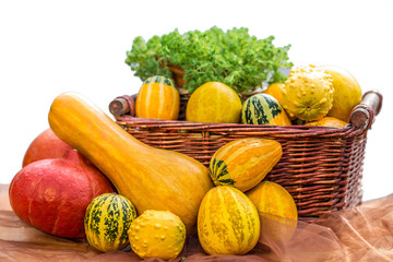 Autumn arrangement of different types of pumkins