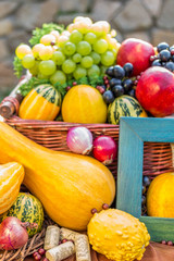 Autumn fruits and vegetables arrangement isolated
