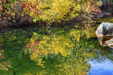 Fall Colors Water Reflection Wenatchee River Washington