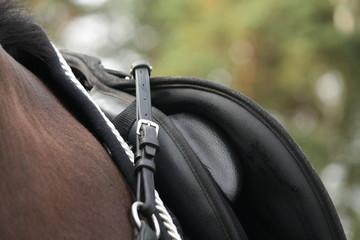 Black saddle on black horse