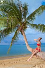 Attractive woman sunbathing on a palm tree