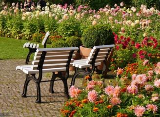 Parkbänke zwischen Blumenbeeten