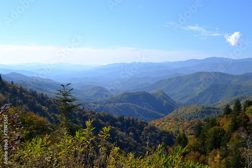 Foto op Plexiglas Bergen Appalachian Mountain Scene-04
