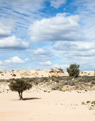 alien moonscape Lake Mungo Australia