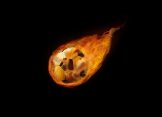 Soccer Ball Flying in Flame
