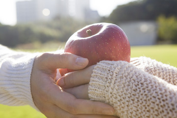 Female hand and apple