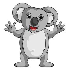 Koala Smile