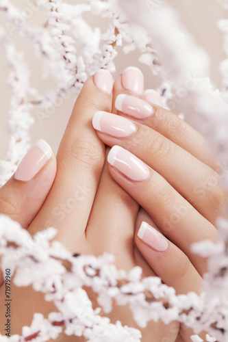 Beautiful woman's nails with french manicure. - 71979960
